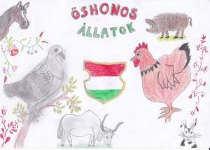 oshonos_allatok